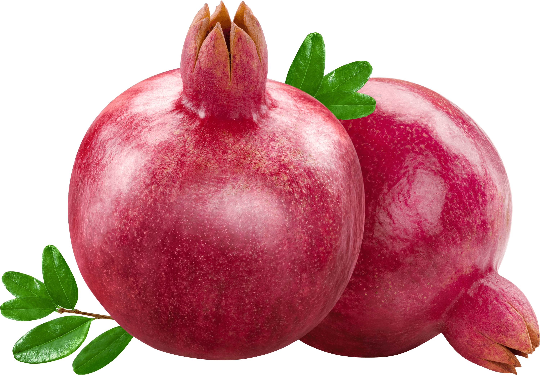 download Pomegranate clipart pomegranate fruit. Duo transparent png stickpng