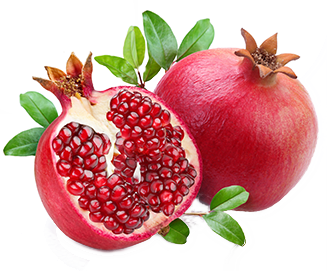 graphic black and white stock Pomegranate PNG Transparent Images