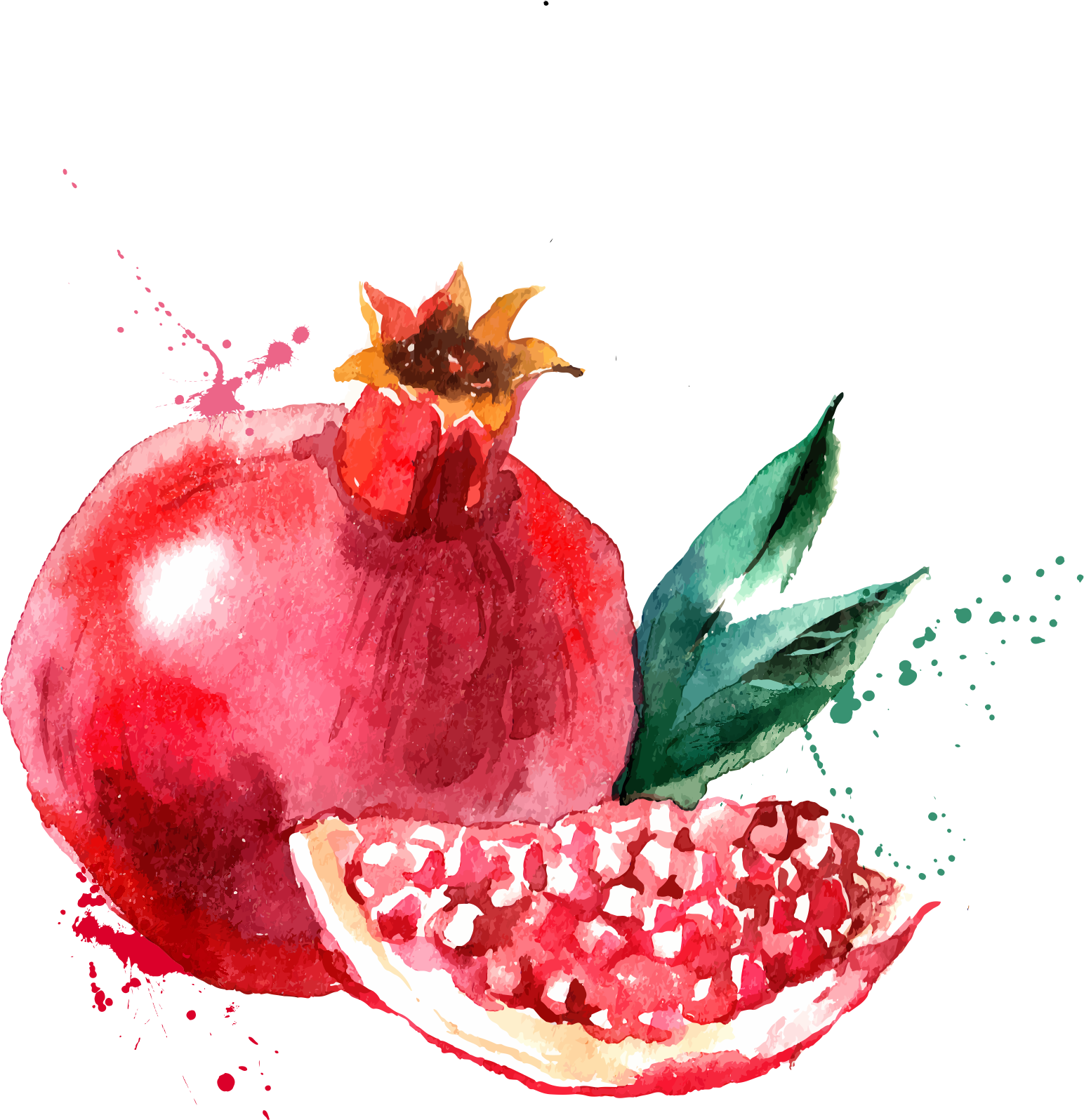 clipart free  pomegranate png for. Drawing strawberries watercolor