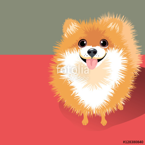 royalty free download Pomeranian vector dog. Illustration of a happy