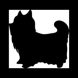 transparent Pomeranian vector silhouette. Yorkshire terrier grooming pinterest