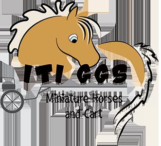 clip stock Pony Parties