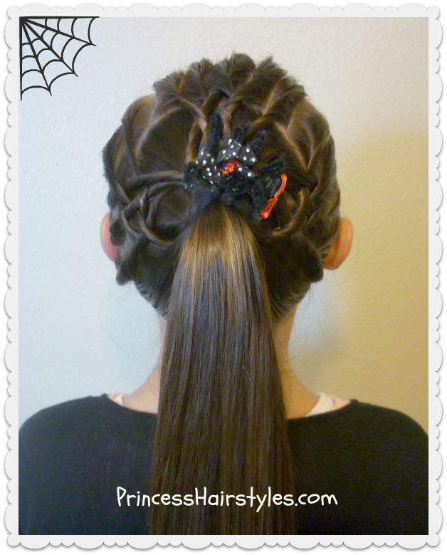 vector Woven spider web hairstyle tutorial