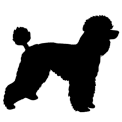 jpg freeuse library Silhouette transparent png stickpng. Poodle clipart.