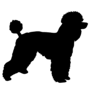 graphic free library Silhouette transparent png stickpng. Poodle clipart black and white.