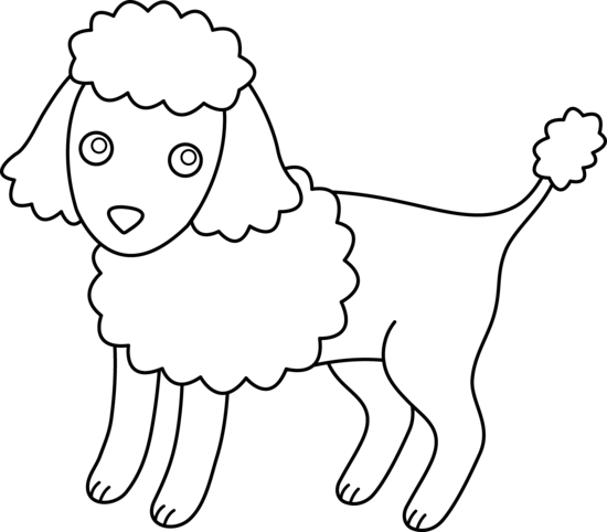 banner transparent Poodle clipart black and white