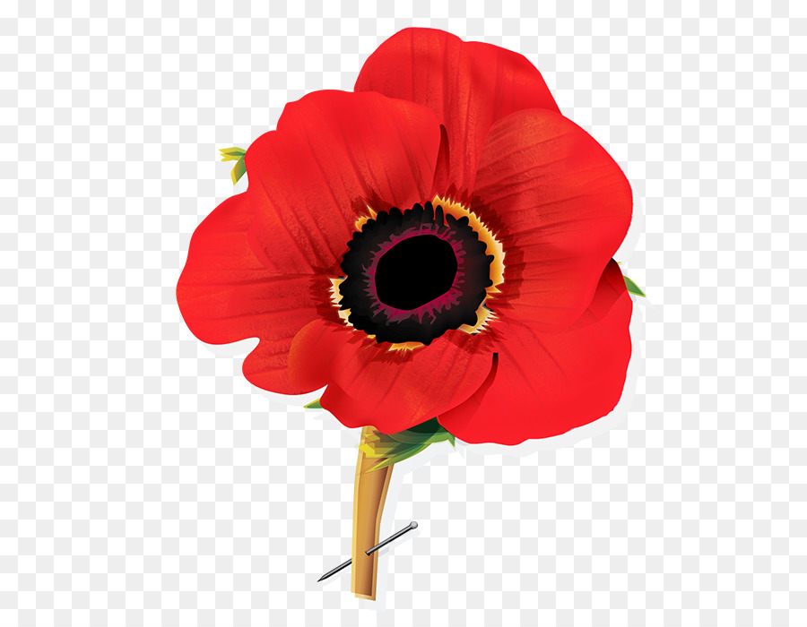 image freeuse stock Flowers background flower red. Poppy clipart