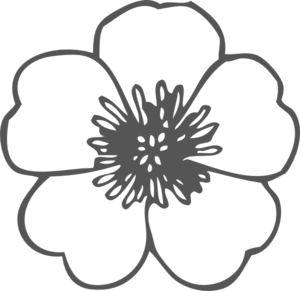 image royalty free download Poppy clipart. Clip art at clker