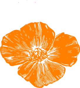 graphic royalty free download Poppy clipart. Orange clip art at