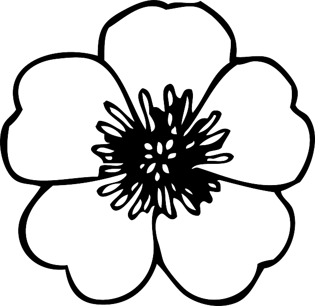 image freeuse library Black green large simple. Poppy clipart small