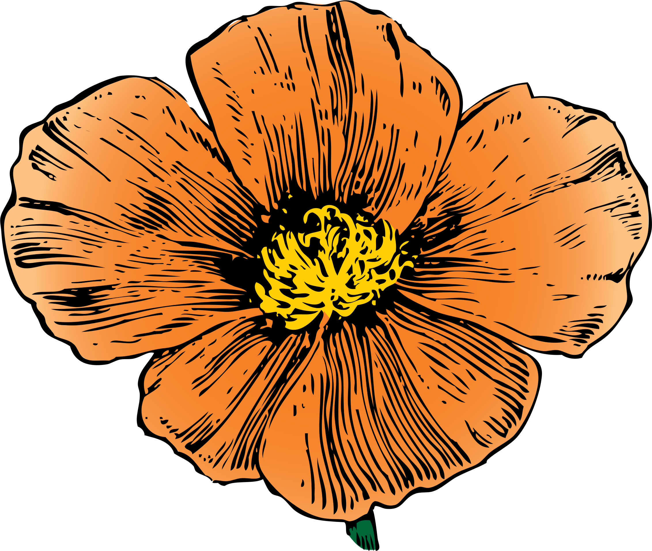 image free Poppy clipart small. California by johnny automatic