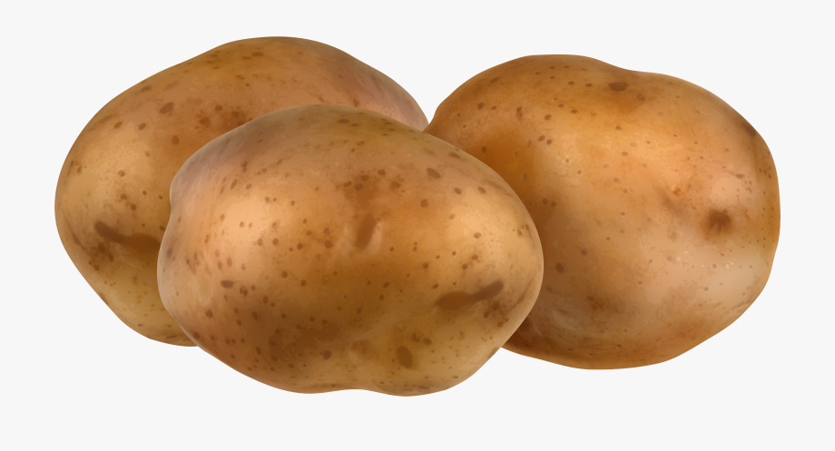 jpg royalty free stock Potatoes clipart. Cute potato png clip.
