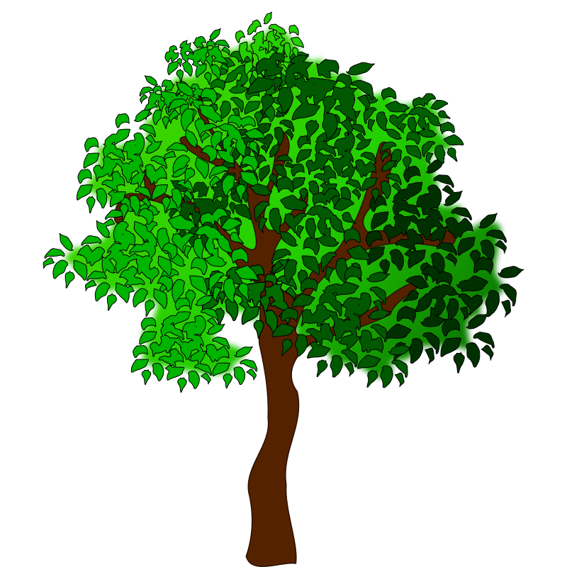 svg free download Summer Tree Cartoons Clipart