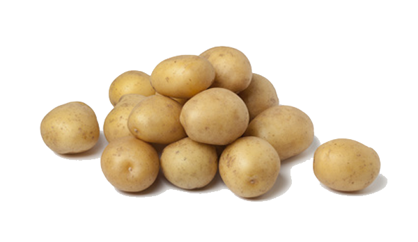 clipart royalty free Potato free png download. Potatoes clipart vector