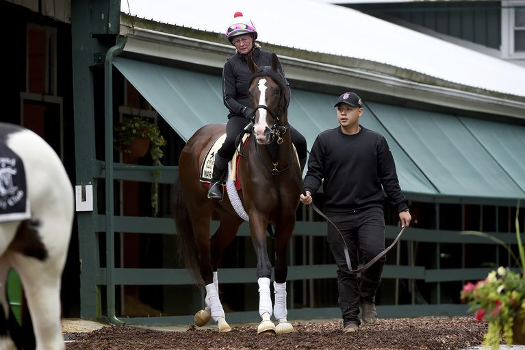 picture freeuse stock Stakes improbable favored in. Preakness drawing.