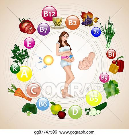 banner library Vector nutrition during woman. Pregnancy clipart pregnant tummy