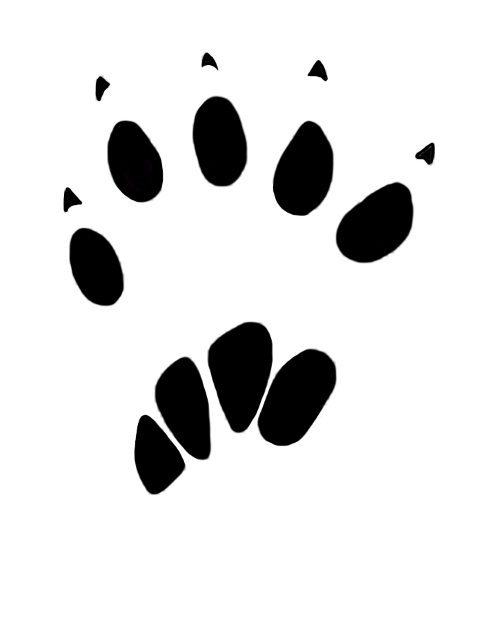 banner freeuse stock Animal tracks clipart. Paw prints