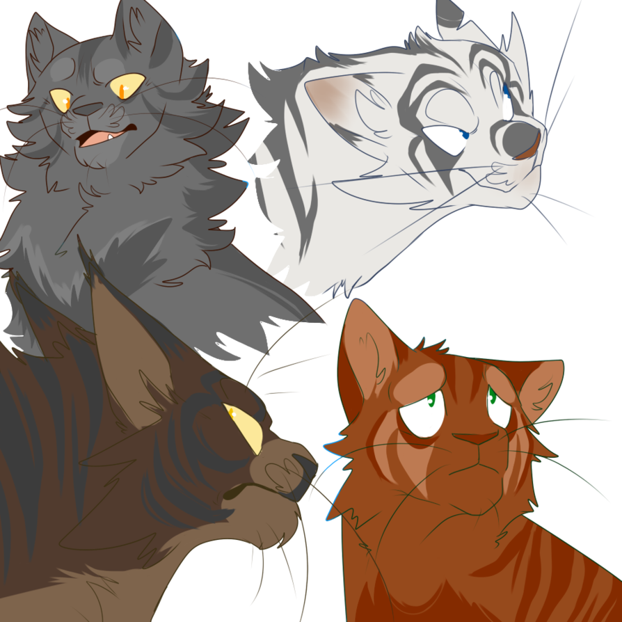 png library stock some bad warrior cat designs by dRaWiNgWiThHeArT on DeviantArt