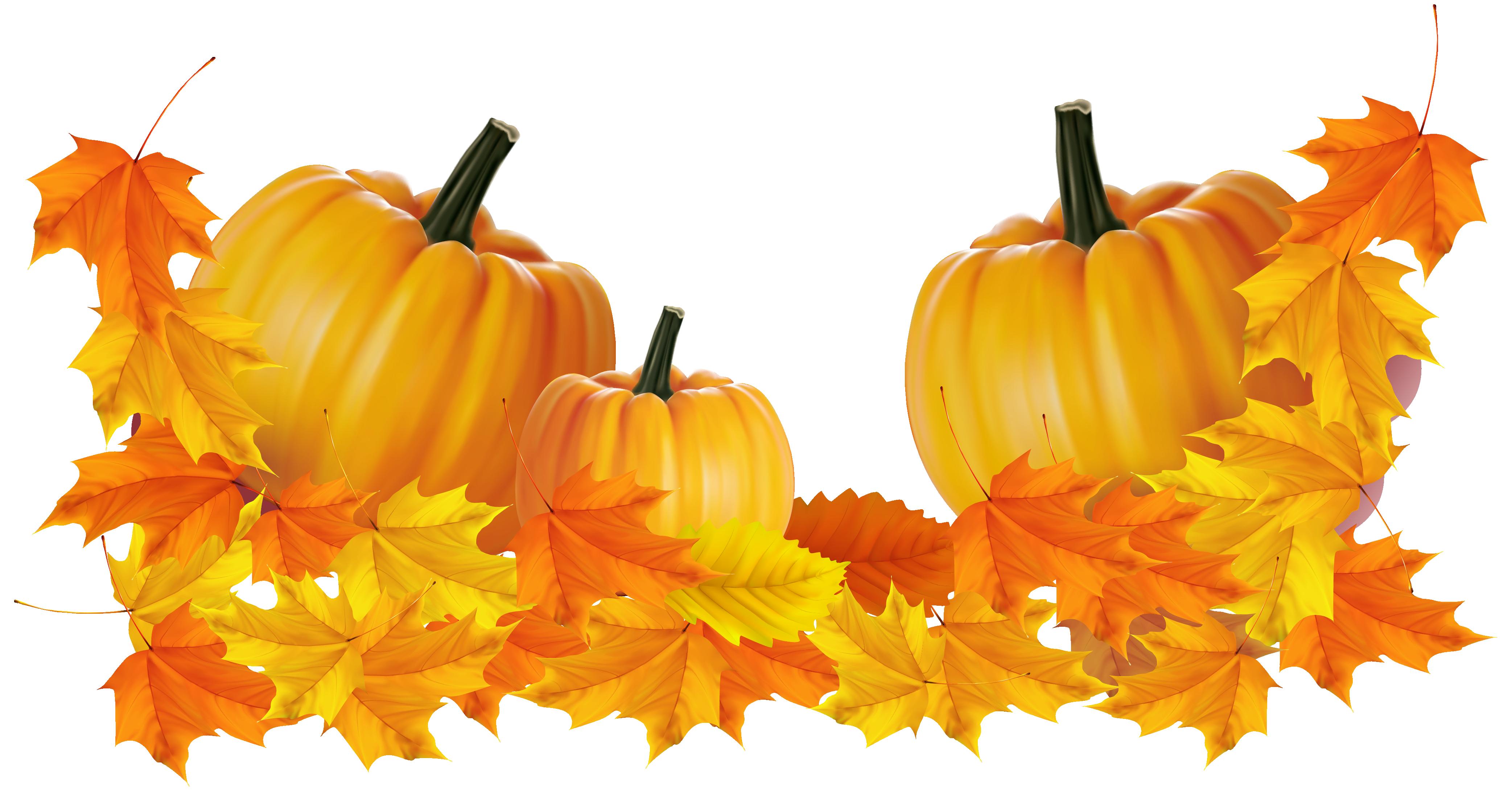 svg transparent library Transparent Thanksgiving Pumpkin Decor Clipart Png