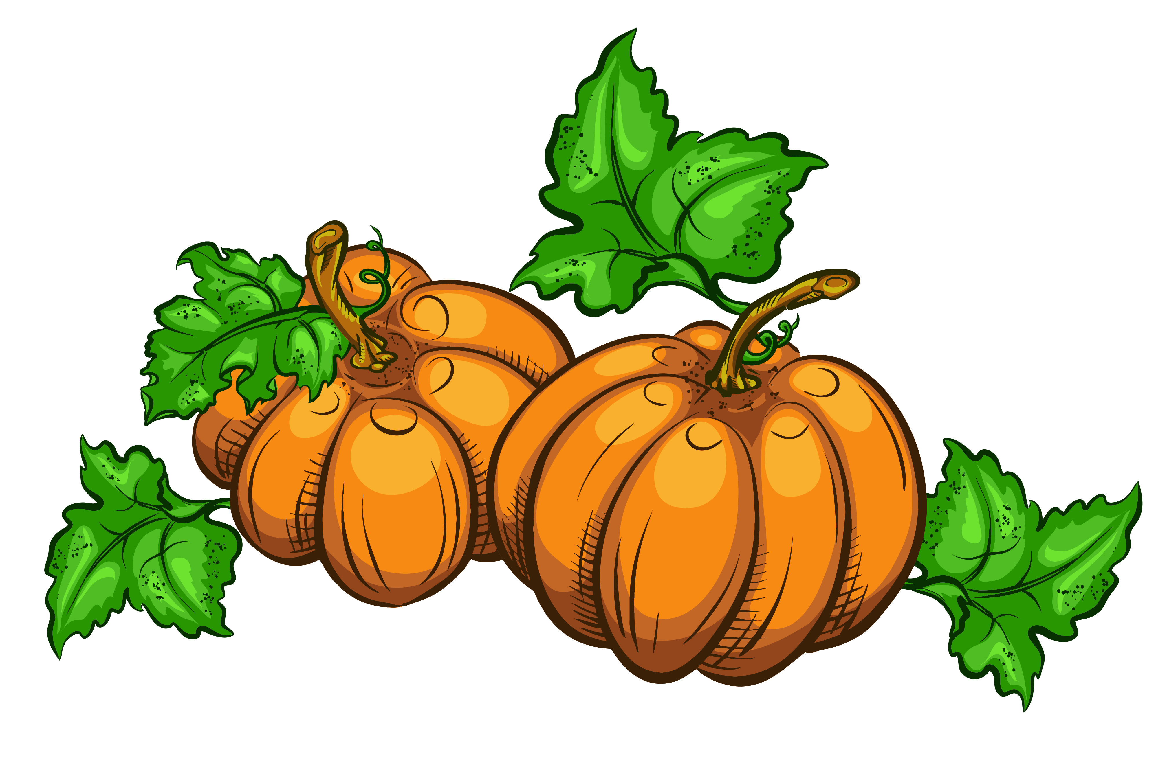 png freeuse library Pumpkins clipart. Transparent png picture gallery.