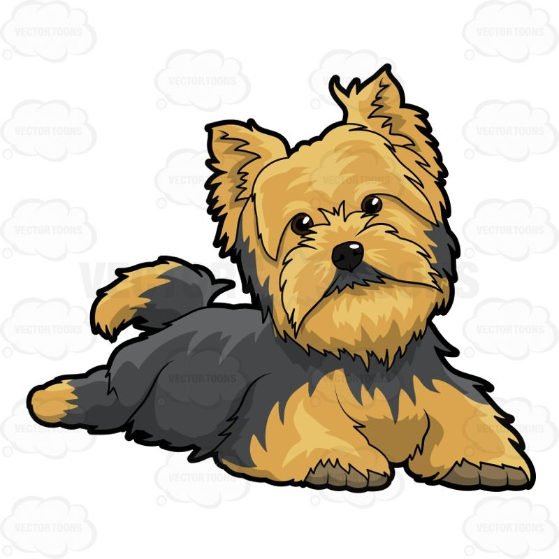 svg library stock Puppies clipart yorkie poo. Little dogs and art