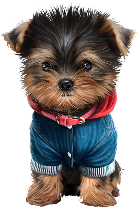 freeuse stock Puppies clipart yorkie poo.  clip art pinterest