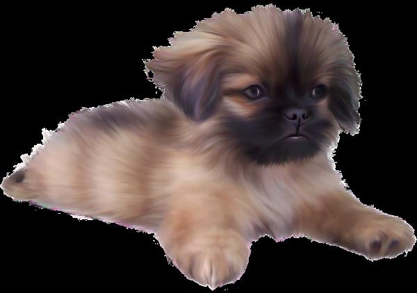 svg free Dog png image