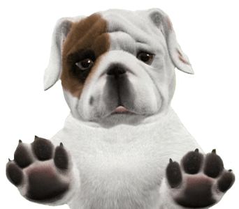 graphic royalty free Png stickpng. Puppy transparent english bulldog