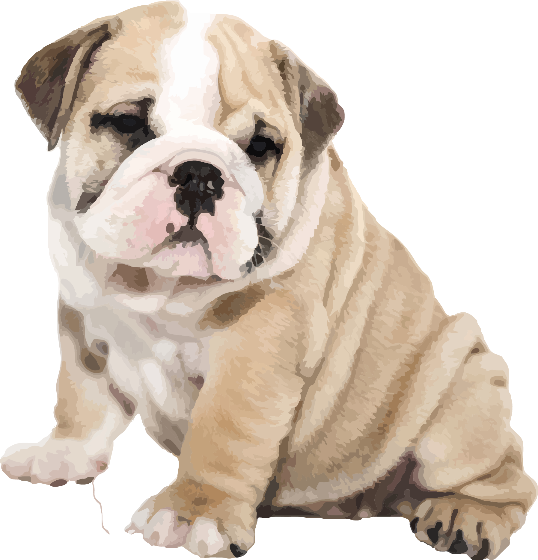 svg library Puppy transparent english bulldog. American old iphone s