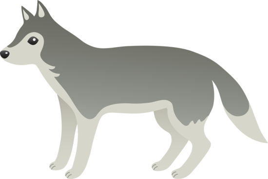 png stock Gray Wolf