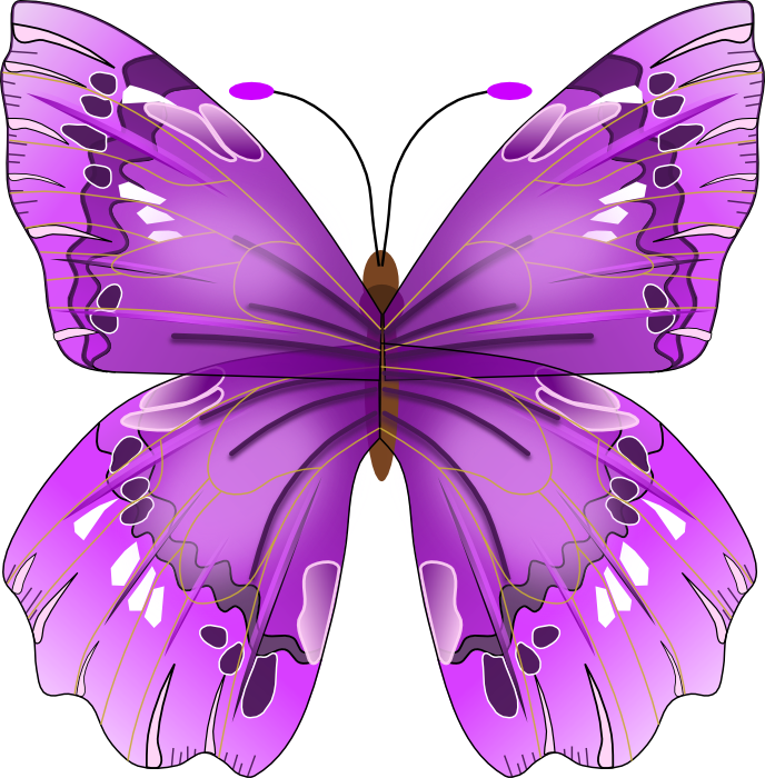 clipart Free Graphics of Butterflies