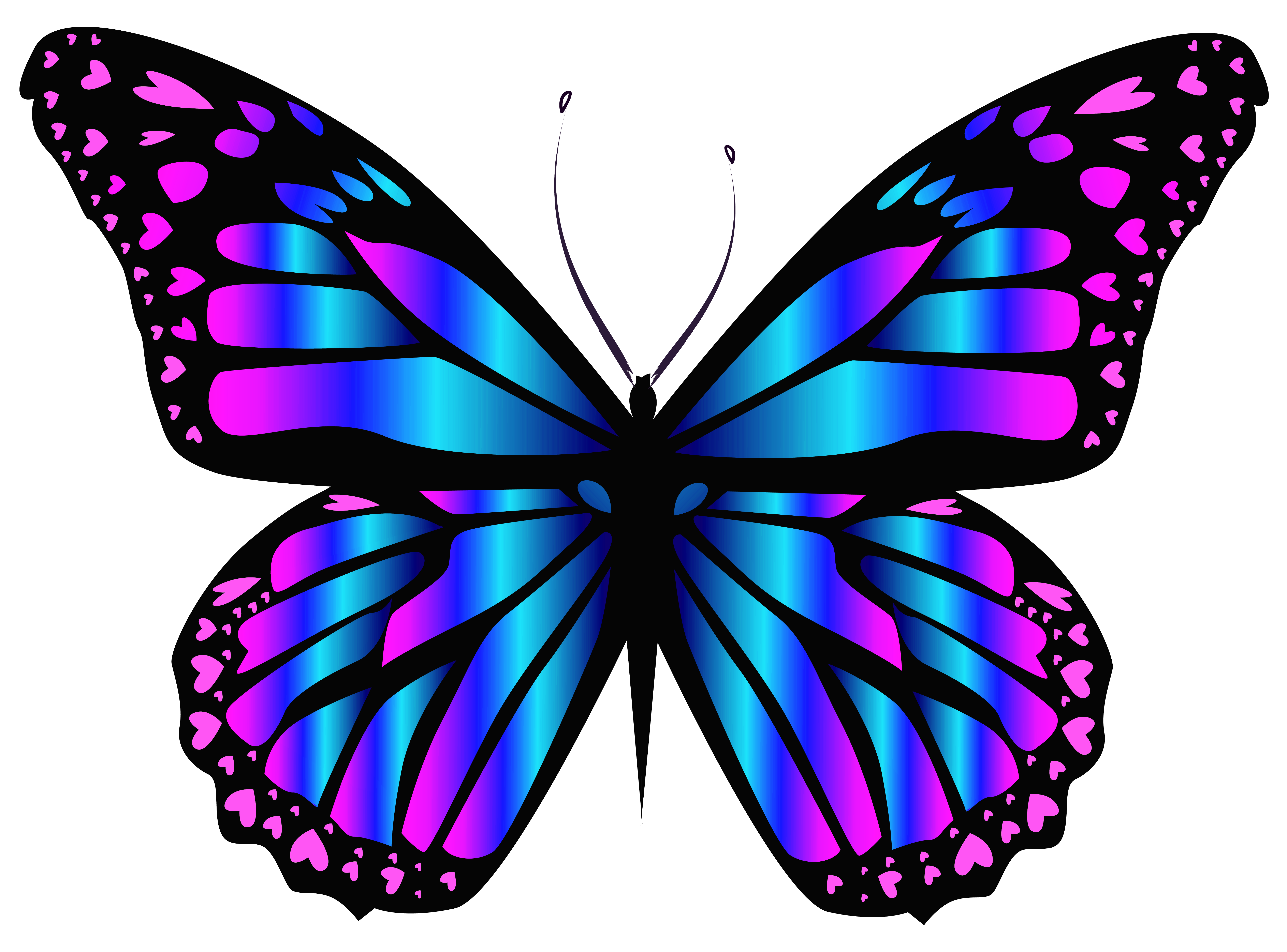 banner freeuse library Blue and purple png. Types drawing colourful butterfly