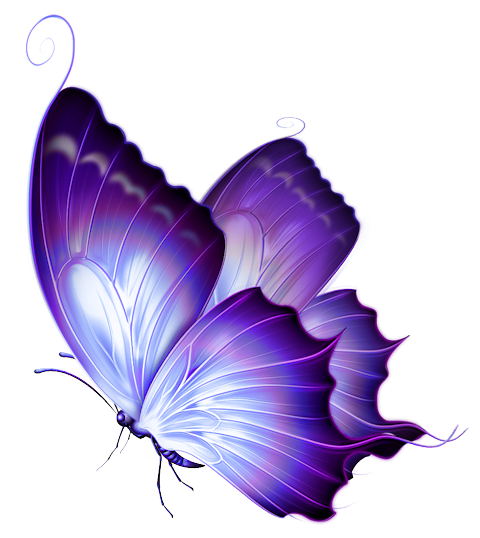 jpg transparent library transparent pics purple #106329347