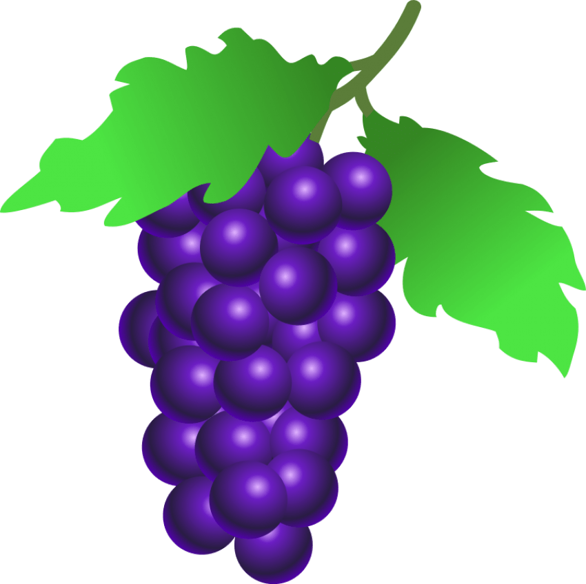 clip royalty free stock grapes clip art png png