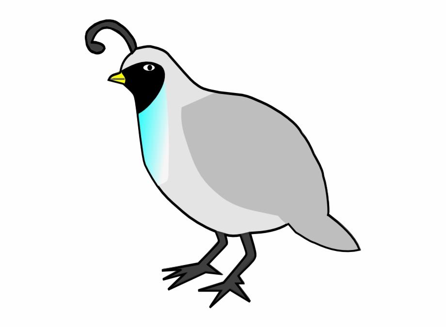 image free stock Quail clipart. Bird clip art library.