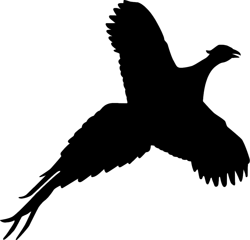 vector black and white download Partridge Silhouette at GetDrawings