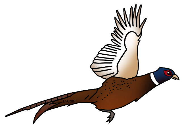clip art black and white Pheasant Clipart at GetDrawings