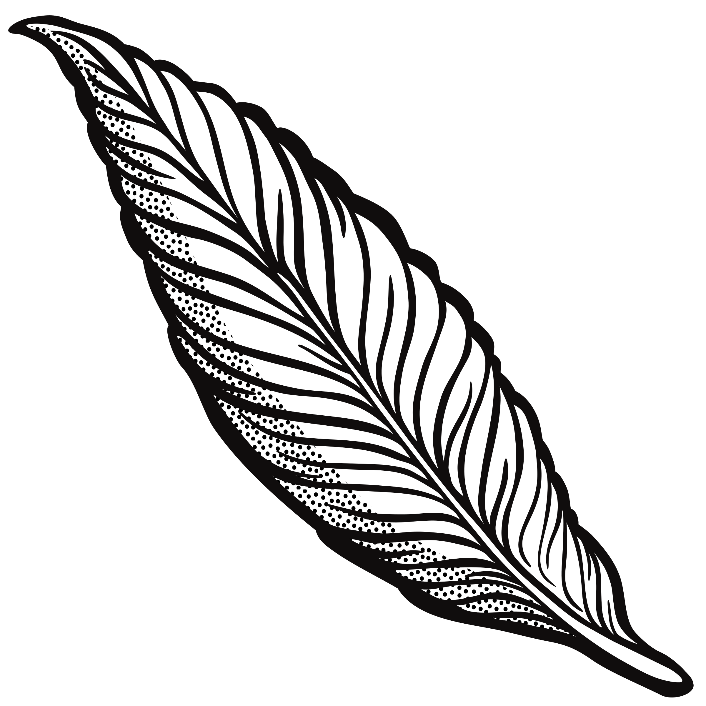 library Line Drawing Feather at GetDrawings