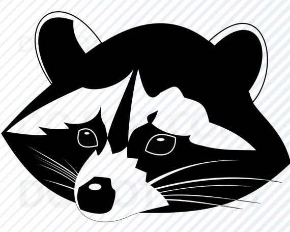 jpg transparent Raccoon face svg file. Racoon vector
