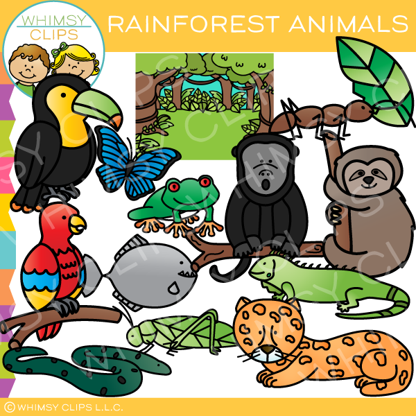 clipart transparent download Colorful animals clip art. Rainforest animal clipart