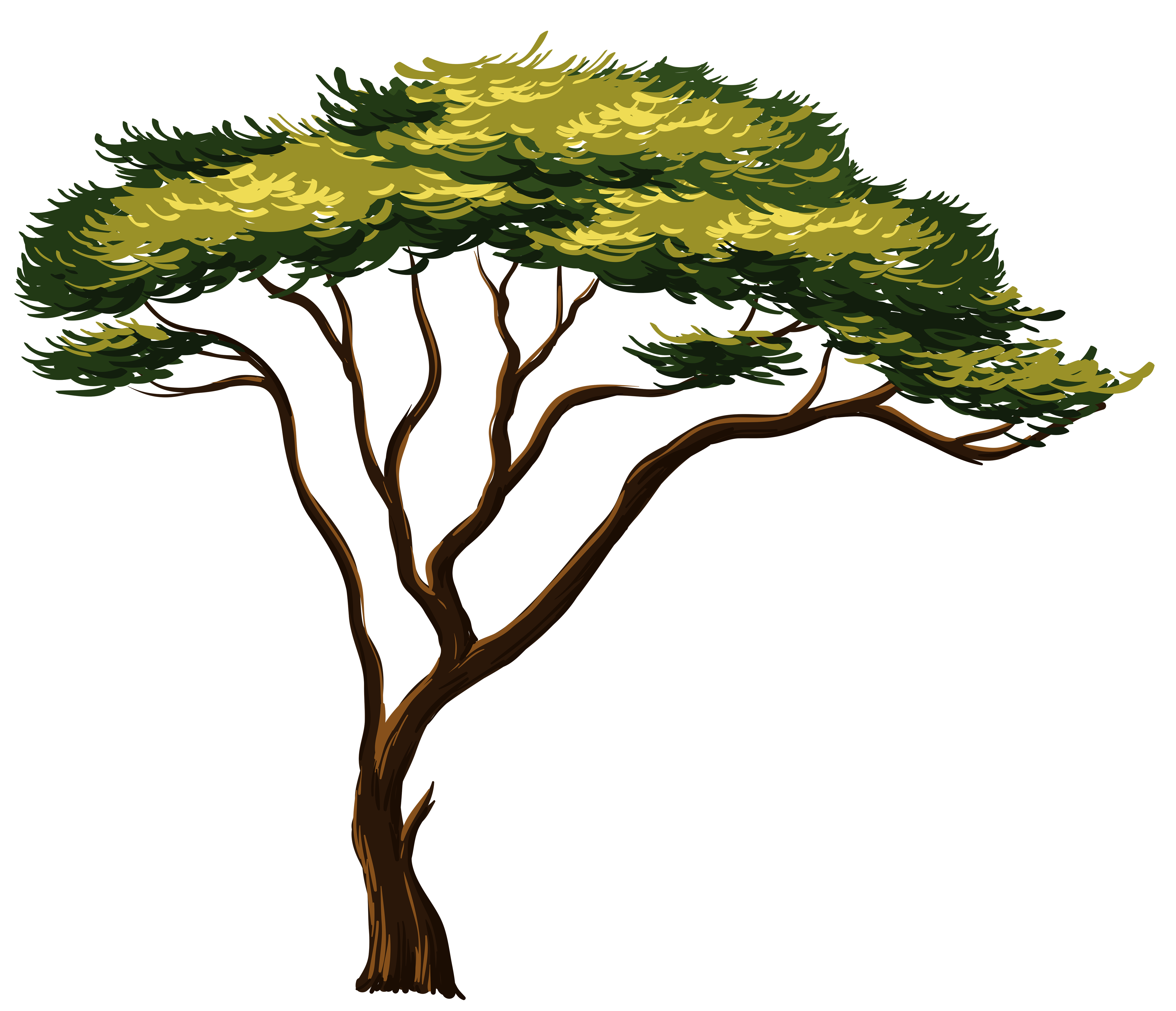 image freeuse stock Jungle Tree Clipart at GetDrawings