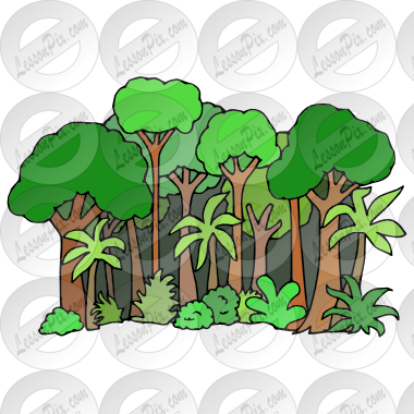 clip art free stock Rainforest clipart. Picture for classroom therapy