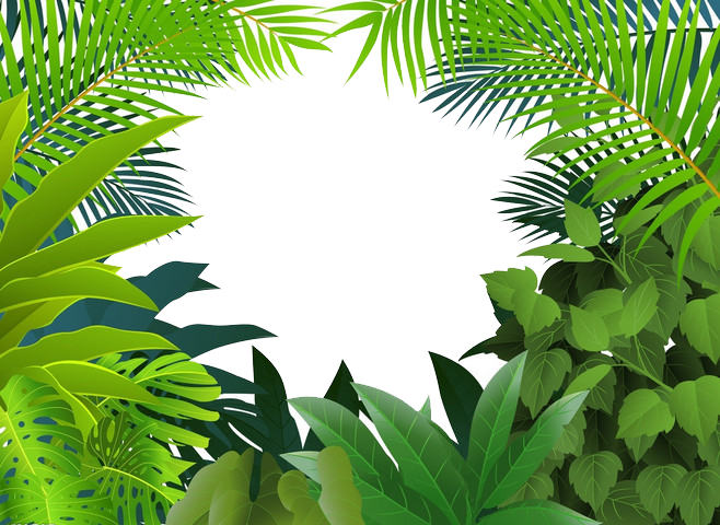 jpg freeuse Tropical rainforest Jungle Tropics Clip art
