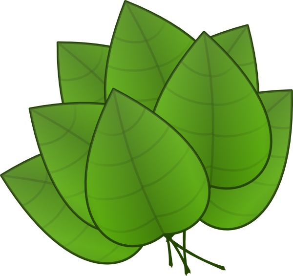 vector transparent download Vector cartoons leaf. Leaves clip art at