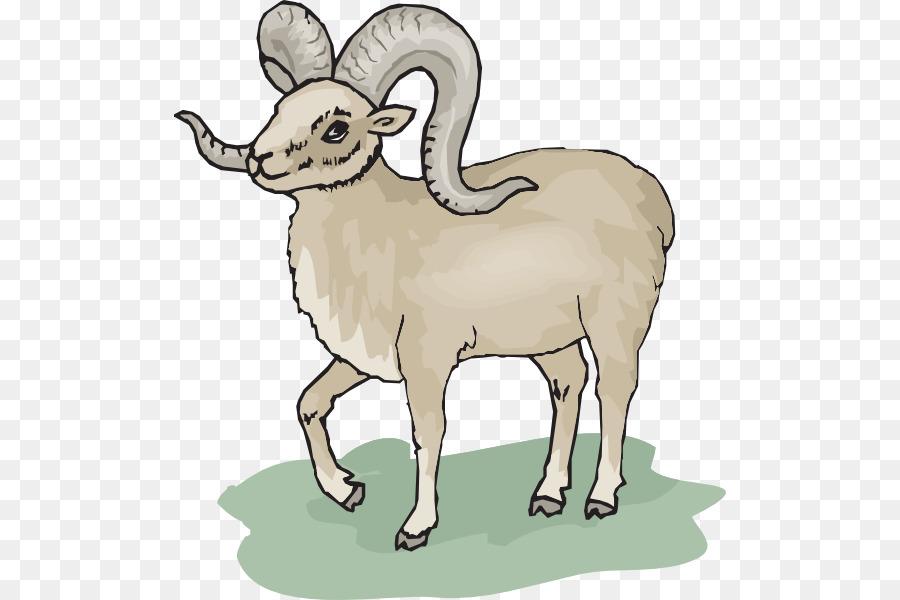 picture royalty free stock Goat cartoon sheep illustration. Ram animal clipart