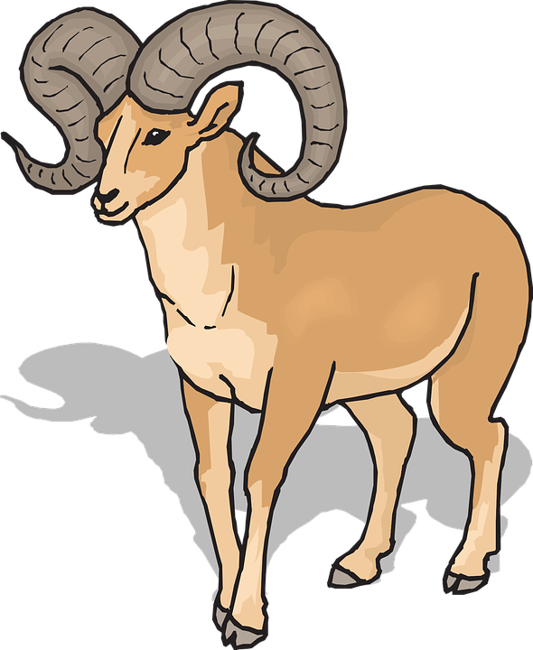 vector royalty free download Free download best . Ram animal clipart
