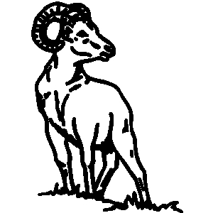 banner black and white download Ram animal clipart. Clip art library