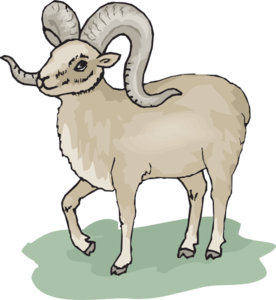 svg free stock Ram clipart. Dall sheep free on.