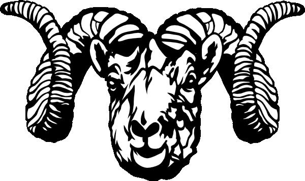 clip art stock Ram animal clipart. Dall sheep clip art
