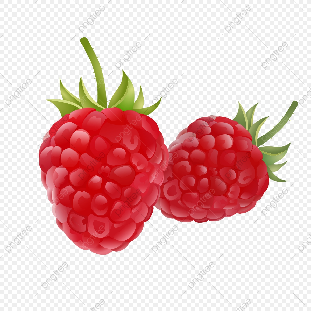 clip art black and white library Raspberry clipart. Fruit drawing logo set.